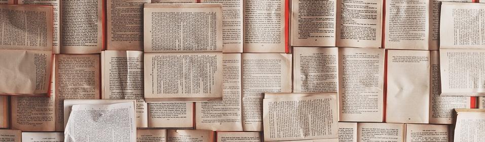 Das Verlagswesen